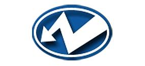 НИИ ИНТРОСКОПИИ логотип